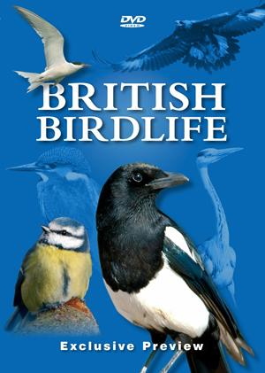 Best of British Birds (Pulled)