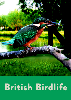 British Birdlife (2012) (Retail Only)