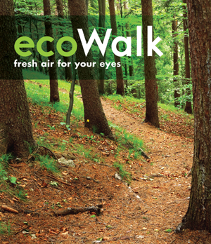 Eco Walk (Blu-ray) (Pulled)