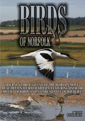 Birds of Norfolk - A Bird Watchers Dream (Deleted)
