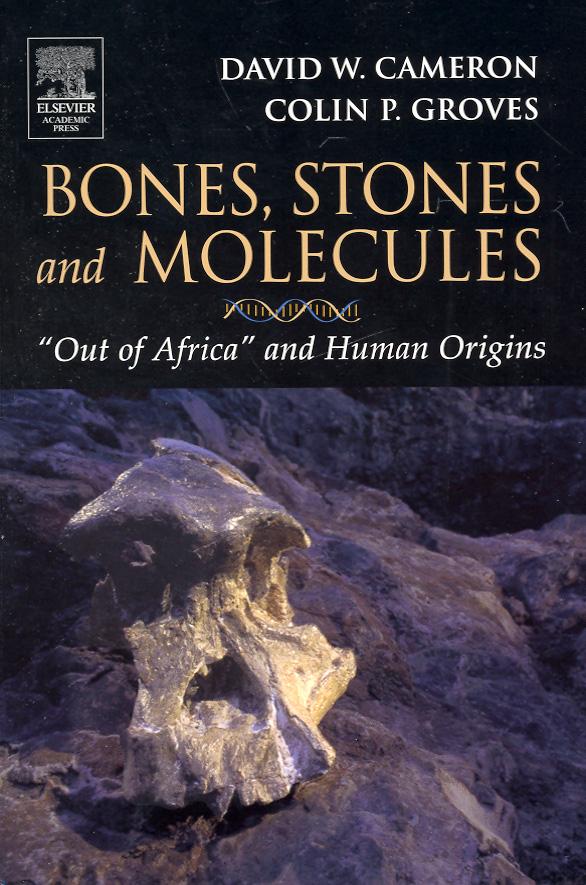Bones, Stones and Molecules