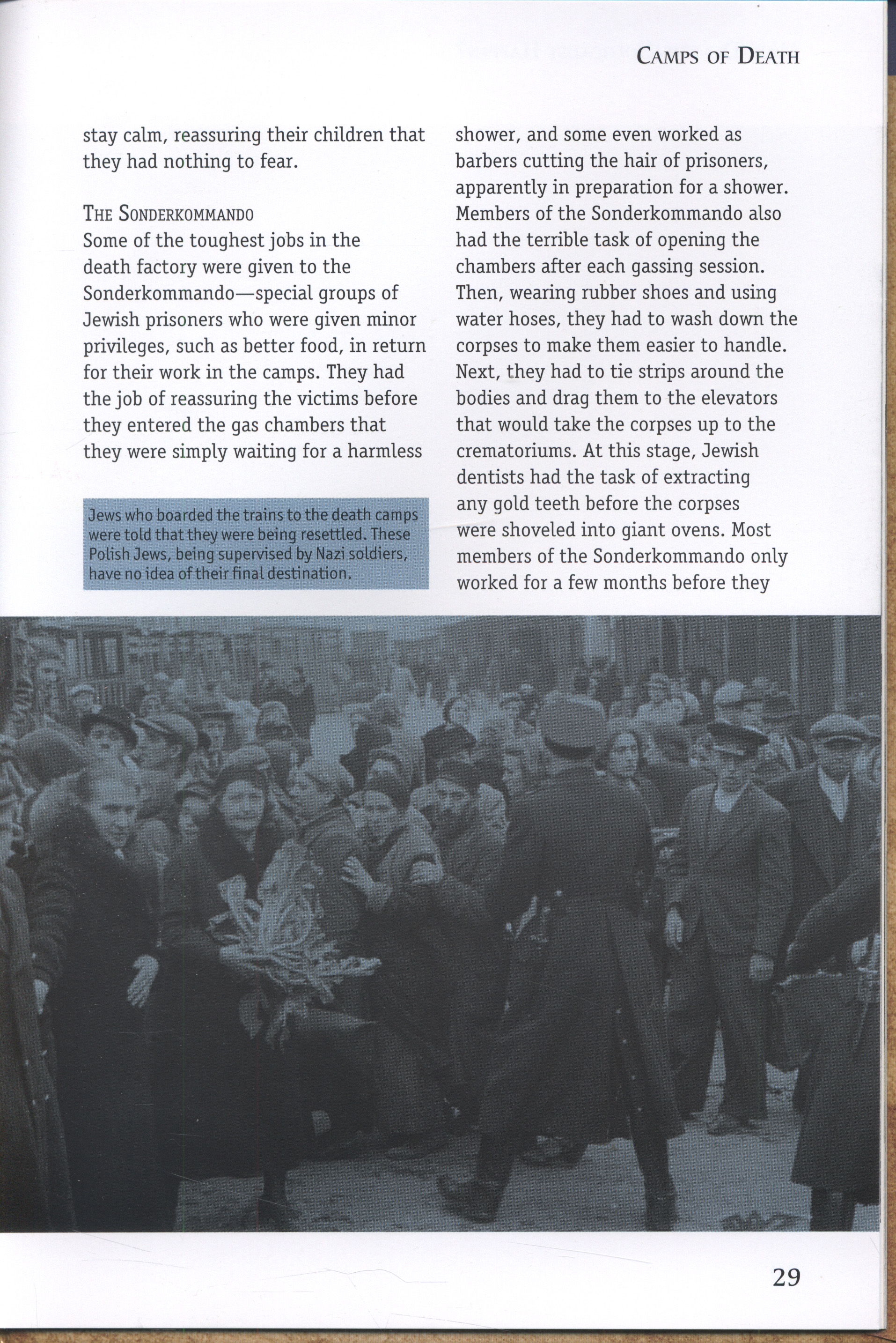"""why did holocaust happen In her comprehensive historical study, the holocaust, leni yahil asks a question which, decades later, we still haven't satisfactorily answered: """"why were so few of the millions of jews who had been living in europe prior to the holocaust saved""""."""