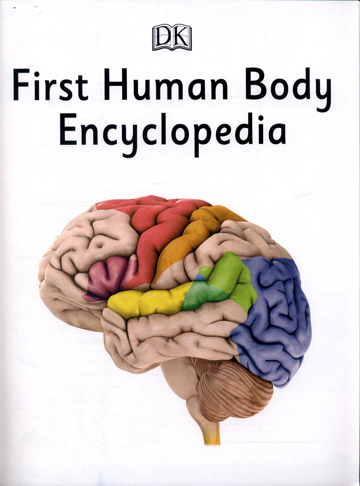 First Human Body Encyclopedia By Dk 9780241188774 Brownsbfs