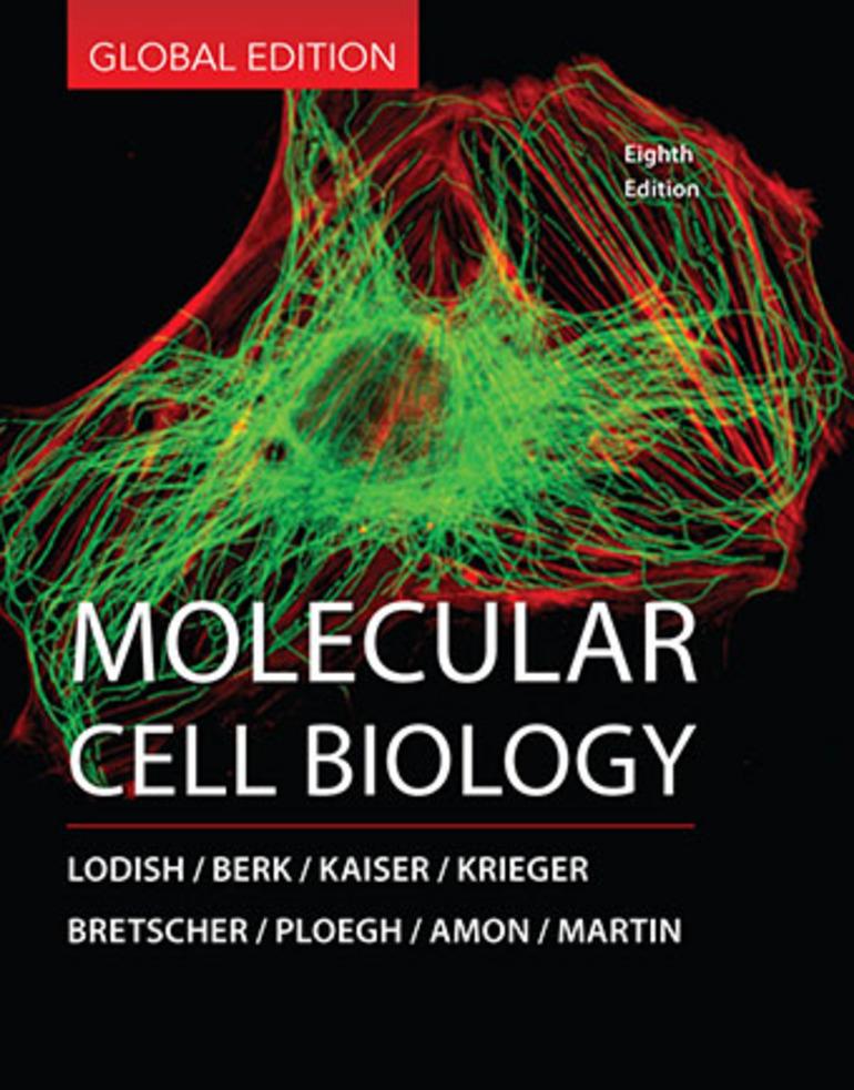 Molecular Cell Biology Arnold Berk Chris A Kaiser Harvey Lodish