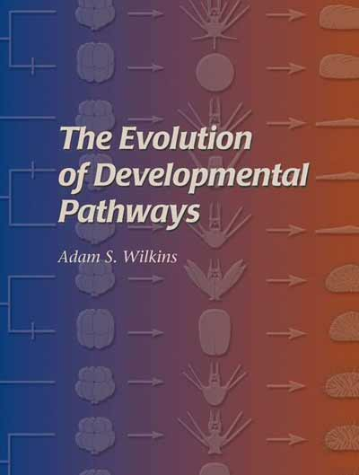 The Evolution of Developmental Pathways