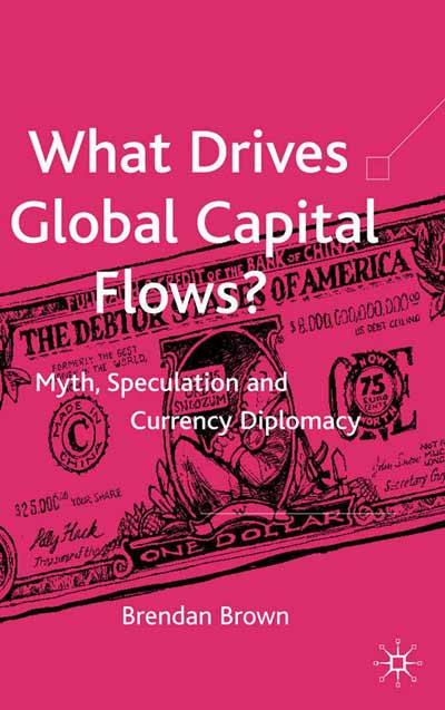 What Drives Global Capital Flows?