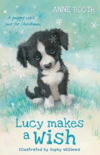 Jacket Image For: Lucy makes a wish