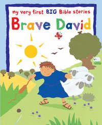 Jacket image for Brave David