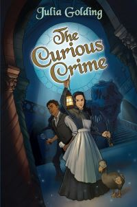 Jacket image for The Curious Crime