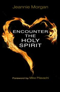 Jacket image for Encounter the Holy Spirit