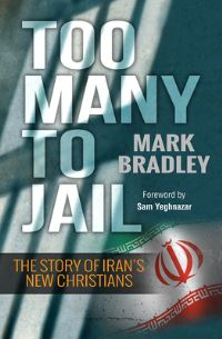 Jacket image for Too Many to Jail