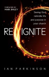 Jacket image for Reignite