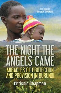 Jacket image for The Night the Angels Came
