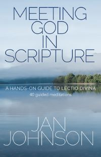 Jacket image for Meeting God in Scripture