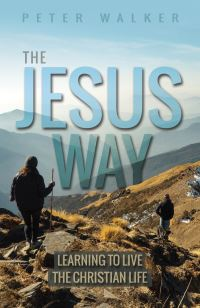 Jacket image for The Jesus Way