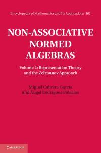 Non-associative normed algebras