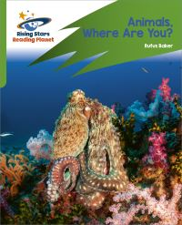 Jacket Image For: Animals, where are you?