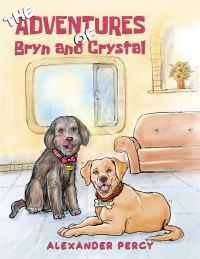 Jacket Image For: The adventures of Bryn and Crystal