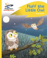 Jacket Image For: Fluff the little owl