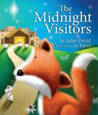 Jacket image for The Midnight Visitors