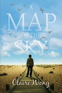 Jacket image for A Map of the Sky