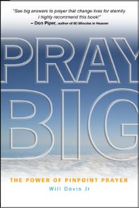 Jacket image for Pray Big