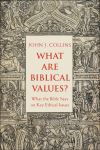 """What Are Biblical Values?"" by John Collins (author)"