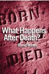 Jacket Image For: What Happens After Death?