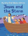 Jacket Image For: Jesus and the Storm