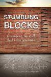 Jacket Image For: Stumbling Blocks