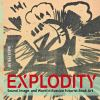 """Explodity - Sound, Image, and Word in Russian Futurist Book Art"" by Nancy Perloff (author)"