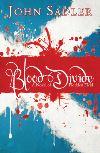 Jacket Image For: Blood Divide