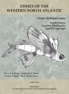 """Order Beloniformes: Needlefishes, Sauries, Halfbeaks, and Flyingfishes"" by Thomas J. Near (editor)"