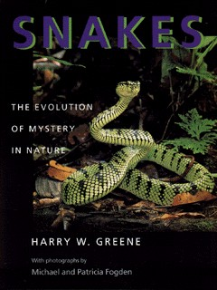 Image for Snakes  : the evolution of mystery in nature