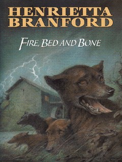 Image for Fire, bed and bone