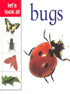 Image for Let's look at bugs