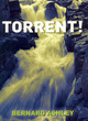 Image for Torrent!