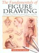 Image for The fundamentals of figure drawing
