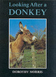 Image for Looking after a donkey