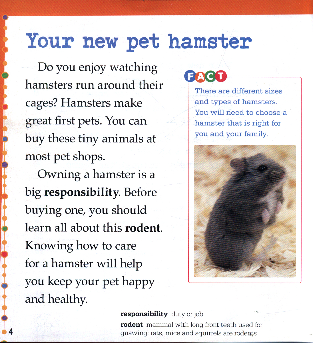 Caring for hamsters by Gagne, Tammy (9781474760898) | BrownsBfS