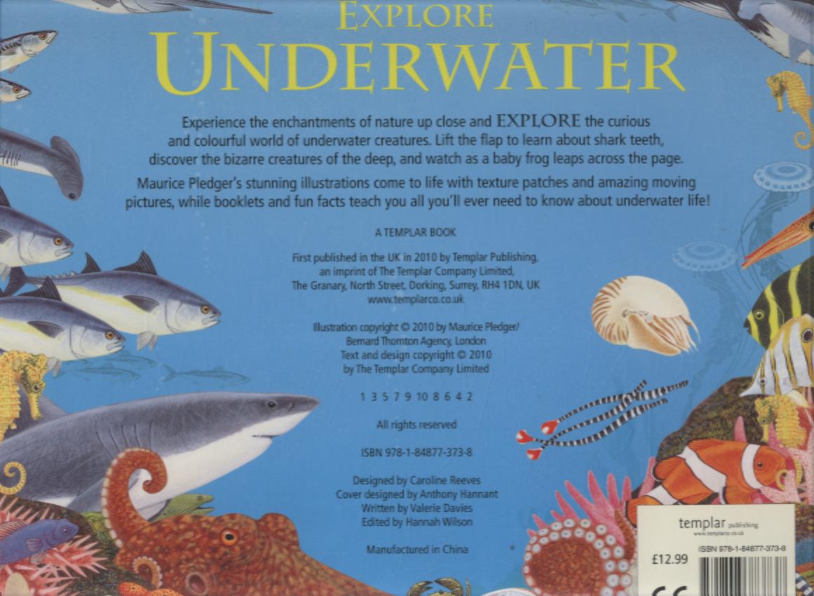 Explore underwater by Pledger, Maurice (9781848773738