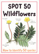 Image for Spot 50 wildflowers