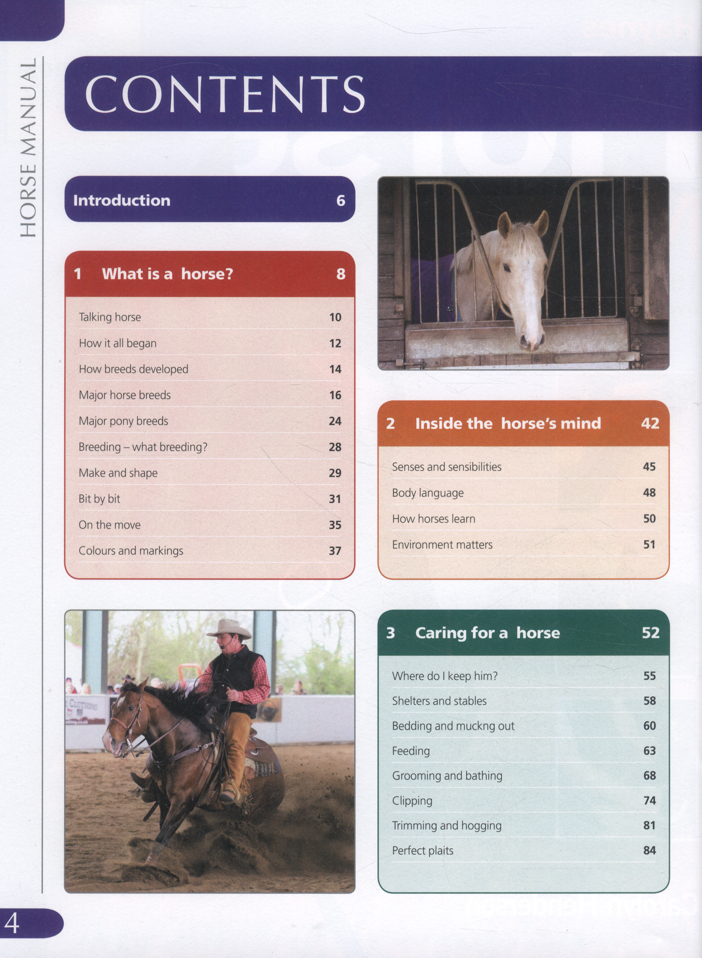 Dentition Horse Manual Guide