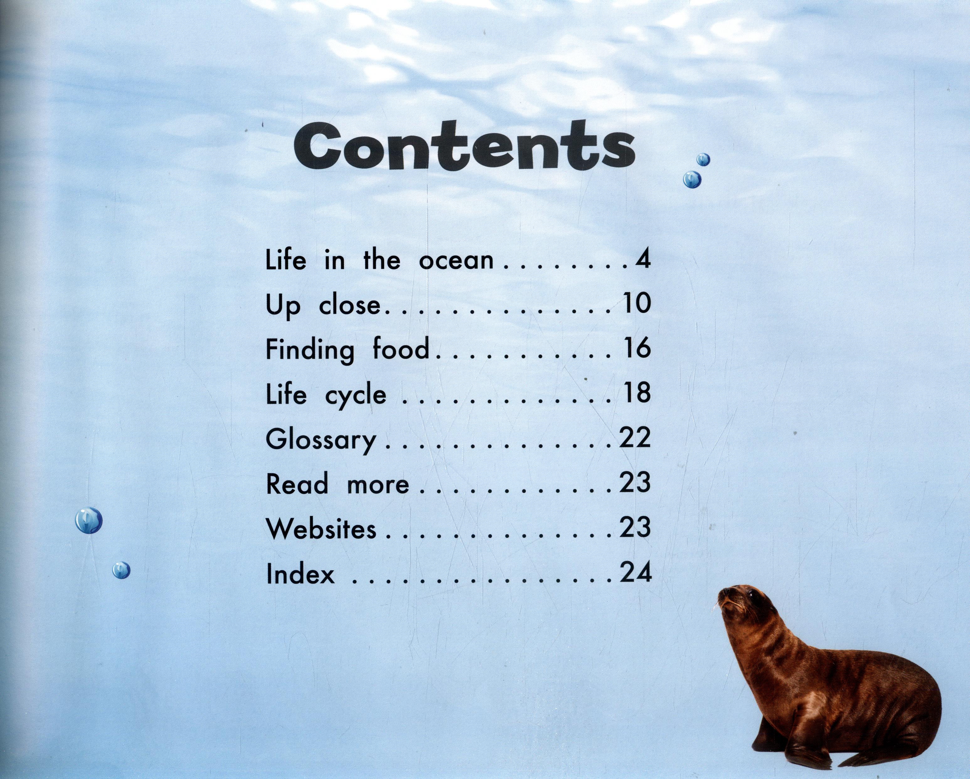 Sea lions by Johnson, Elizabeth R  (9781474725910) | BrownsBfS