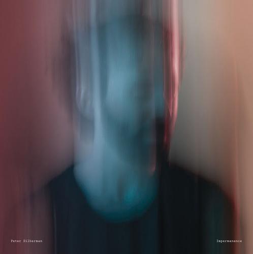Peter Silberman : Impermanence CD (2017) ***NEW***